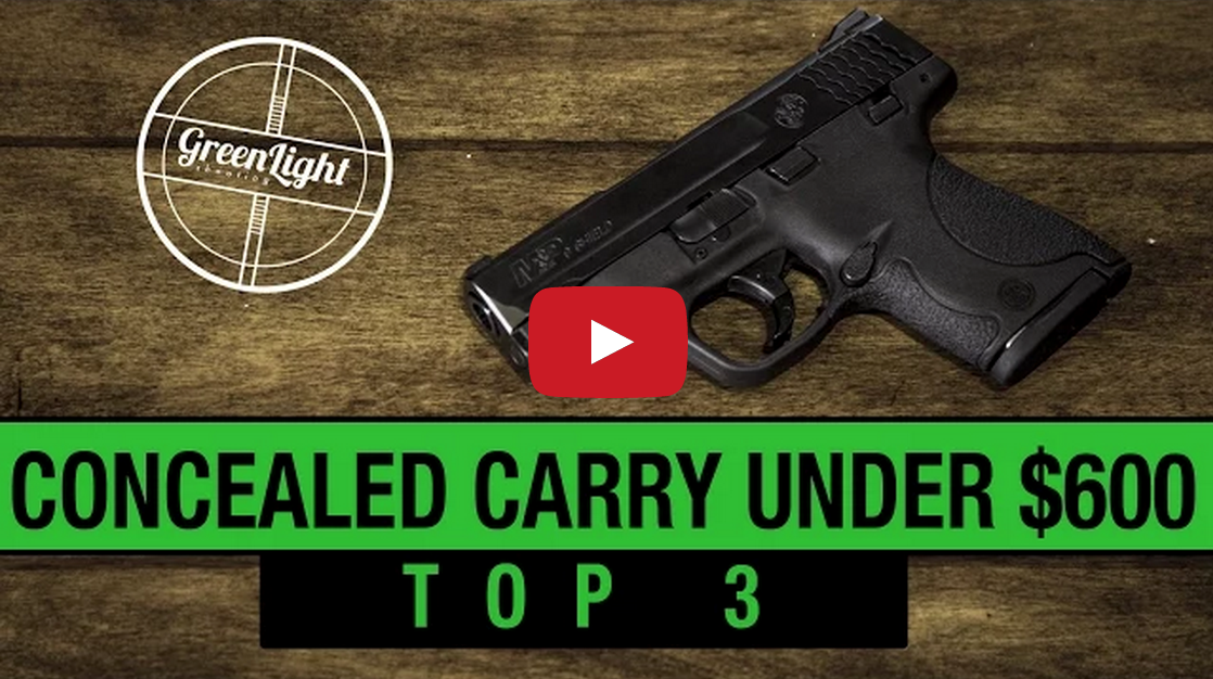 Top 3 Best Concealed Carry Guns Under $600 Video