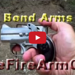 Bond Arms Derringer - Range Shooting