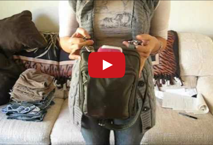 A Concealed Carry Gun Purse That I Actually Like Video